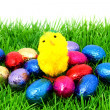 Easter eggs and chicken on grass — Stock Photo #2379254
