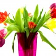 Tulips in a pink vase — Stock Photo