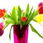 tulipes dans un vase rose — Photo