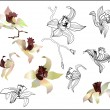 Orchid branch vector set — Stockvectorbeeld
