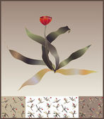 Tulip card — Stock Vector
