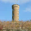 Stock Photo: Turm im Weinberg
