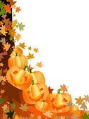 Funny pumpkins — Stock Photo