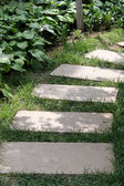 Paved path in the garden — Stock Photo