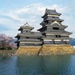 Stock Photo: Matsumoto Castle.