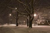 Winter city at night — Stock Photo