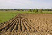 The ploughed field — Stock Photo