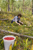 Young woman pick berries — Stock Photo