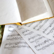 WRITING-BOOK AND NOTES — Stock Photo
