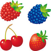 Berry vector — Stock Vector