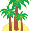 Palm tree vector — Stock Vector