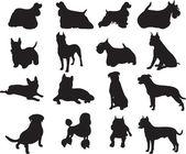 Dog vector — Stock Vector