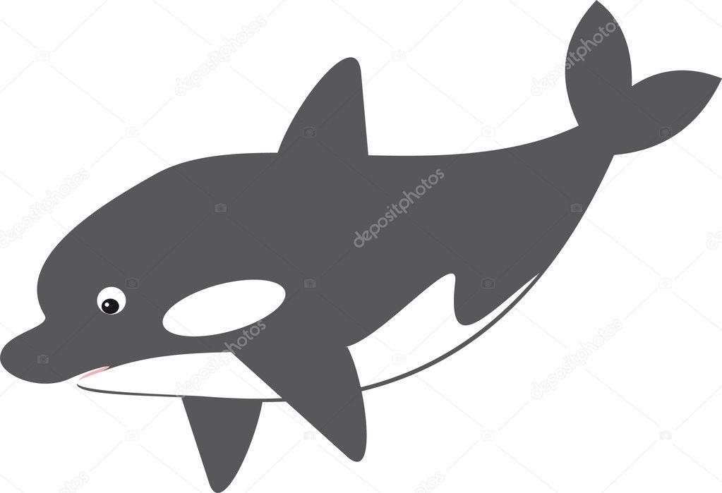 鲸鱼矢量 - 图库插图