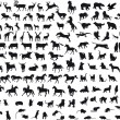 Animals vector — Stockvector  #2479355