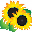 flower vector — Stock Vector