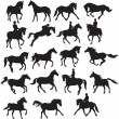Horse vector - Stock Vector