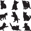 Royalty-Free Stock Vector Image: Cat vector