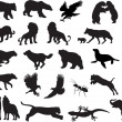 Stockvektor : Animals vector