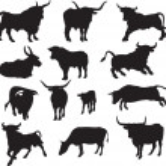 Bull vector — Stock Vector #2480350