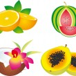 Fruits vector — Stock Vector #2630790
