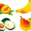 Fruits vector - Stock Vector