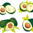 Avocado vector — Vector de stock