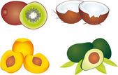 Vector de frutas — Vector de stock