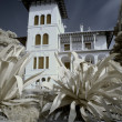 Villa Carolina, Mali Losinj — Stock Photo