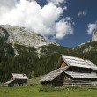 Stock Photo: Mountain village in Slovenia