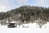 Winter landscape and kozolec — Stock Photo