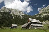 Mountain village in Slovenia — Stock Photo