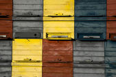 Beehive detail — Stock Photo