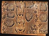Produtos a partir de um crocodilo e uma cobra — Fotografia Stock