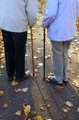 Elderly couple holding sticks — Stock Photo