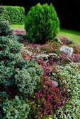 Garden — Stock Photo