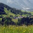 alpine landschaft — Stockfoto