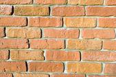 Close up of wall made of bricks — Stock Photo