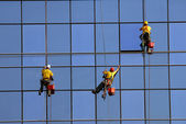 Men washing windows at height — Stockfoto
