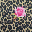 Stock Photo: Leopard fabric with rose
