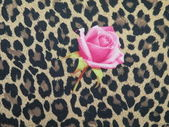 Leopard fabric with rose — Stock Photo