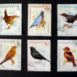 Postmarks with birds — Stock Photo