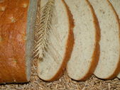 White bread on grains — Stock Photo