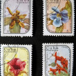 Postmarks with flowers - Stock Photo