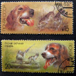 Postmarks with dogs - Stock Photo