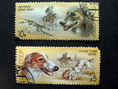 Postmarks with dogs — Stock Photo