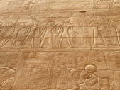 Egyptian hieroglyps in Karnak Temple — Stock Photo