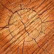 Wooden texture — Stock Photo #2663112