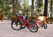 Bicycles on the park — Stock Photo