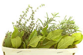 Aromatic herbs isolated — Stock Photo