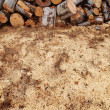 Fresh sawdust and lumber pile — Stock Photo